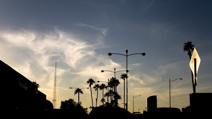 Palm trees and lamp posts